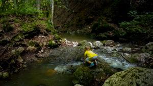 Început de vară – Cheile Borzești