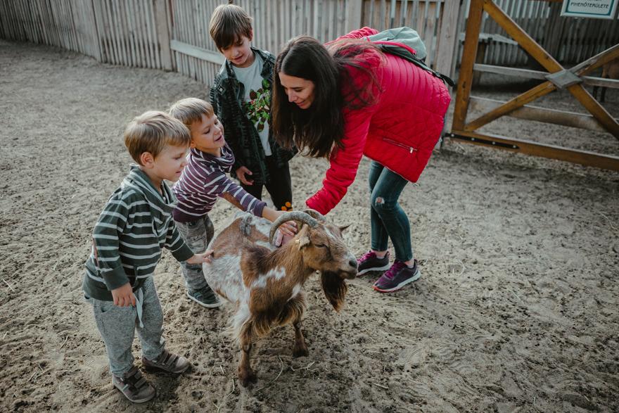 Copiii și mama mângâie o capră la Zoo Budapesta Fovarosi Allat es Novenykert în Budapesta