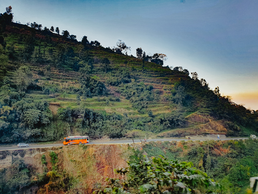 Peisaj cu jungla si autobuz