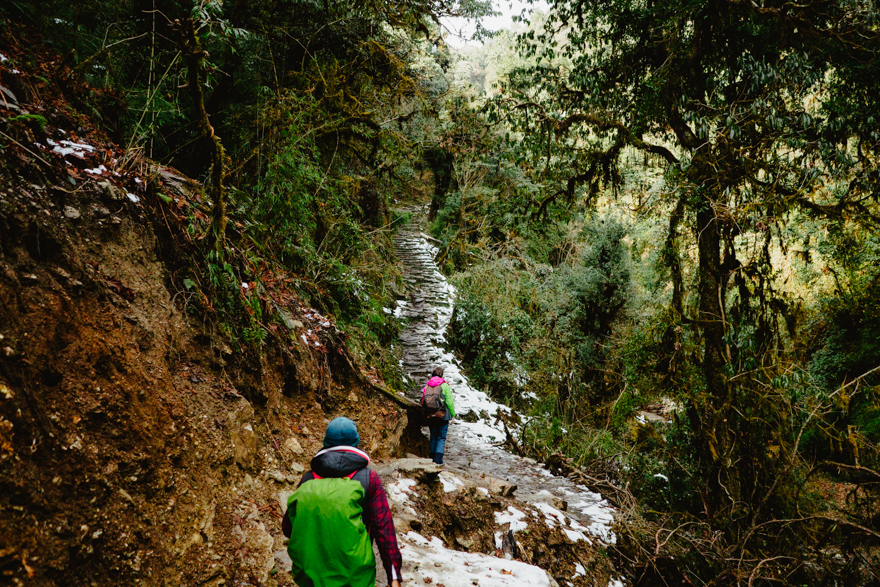 Trekking in jungla cu zapada in Nepal