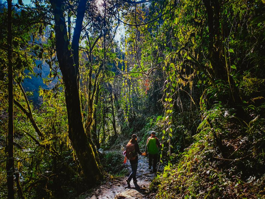 Trekking prin jungla din Nepal