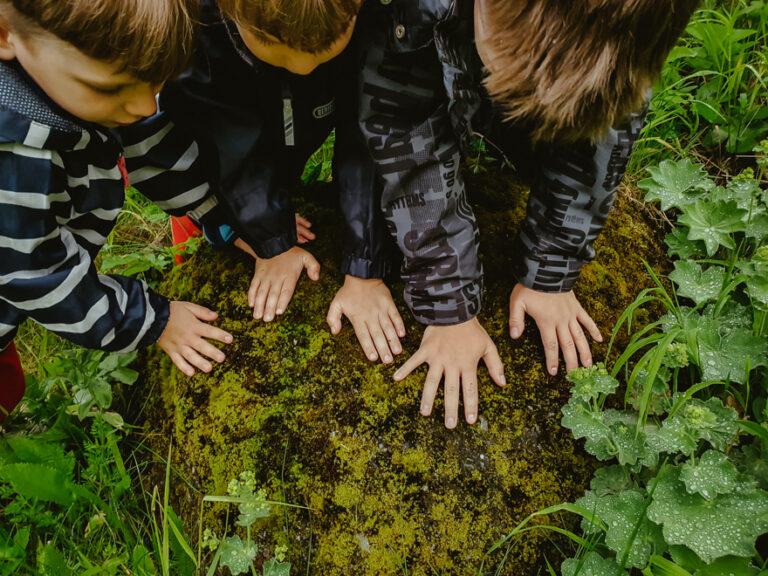 Copiii naturii