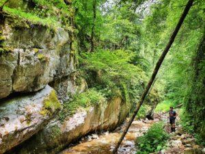 Descoperă Pădurea Craiului